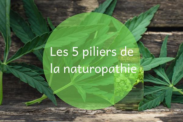 les 5 piliers de la naturopathie